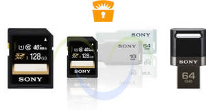 Featured image for Sony Up To 60% Off MicroSDs, USB Flash Drives & More 24hr Promo 29 – 30 Jan 2015